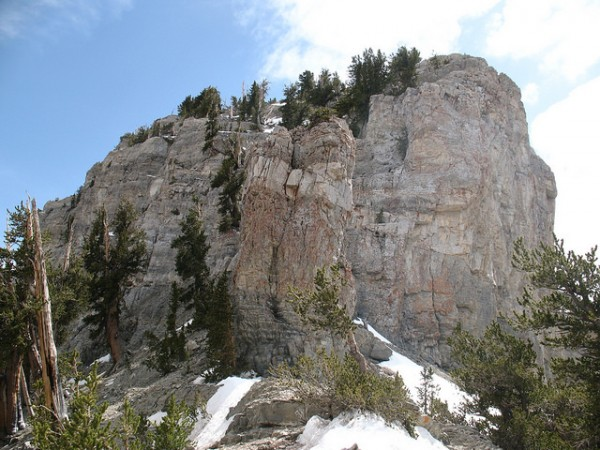 las vegas day hikes in mount charleston