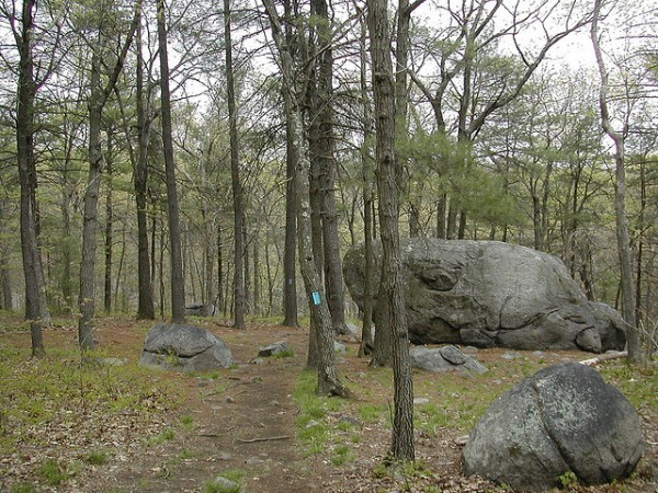 5 best day hikes near boston blue hills skyline trail