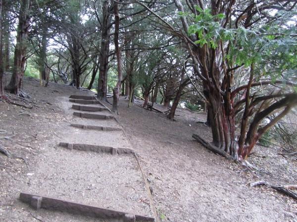 5 best day hikes near london box hill