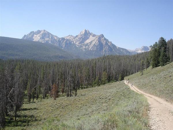 best mountain biking trails elk meadow