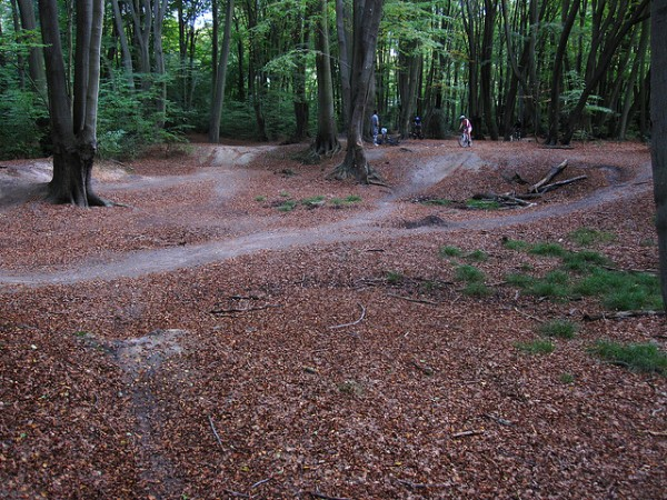 5 best mountain biking trails near london epping forest