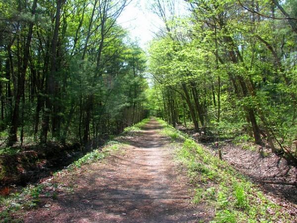 5 best day hikes near boston reformatory branch trail