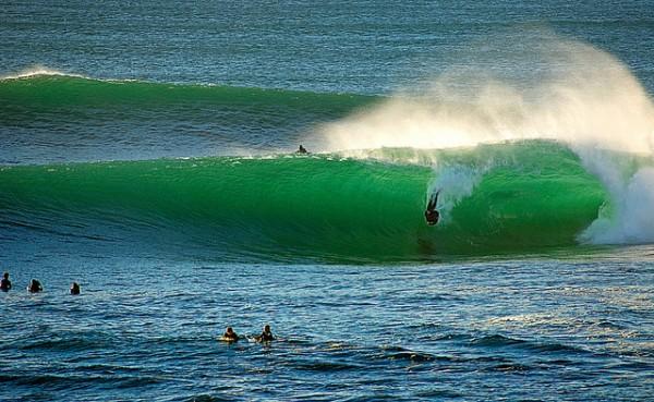 shark island 5 best surf spots in sydney