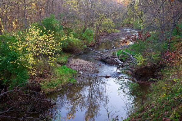 waterfall glen 5 best day hikes near chicago