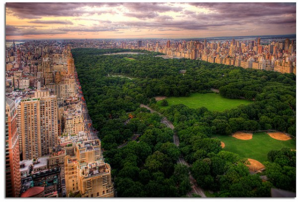 10 action sports for nyc residents central park