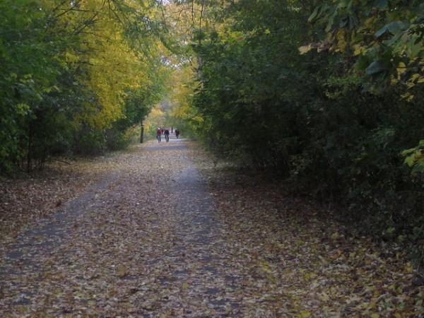 minuteman bikeway 5 best cycling routes in boston